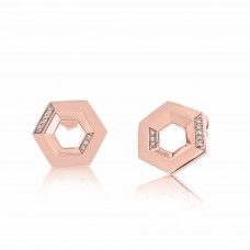 Ornate Hexagonal Rose Earrings