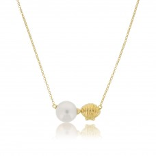 Serene Sea Shell Gold Necklace